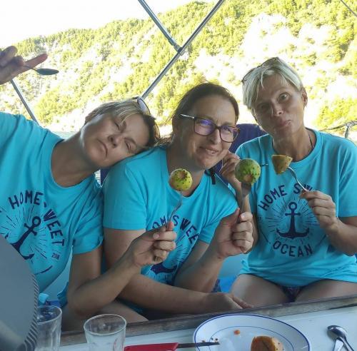 Rund Korfu Felsen Agios Giordios Katusfeigen essen